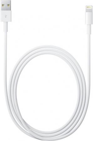 Apple Lightning to USB White (MD818ZM/A)